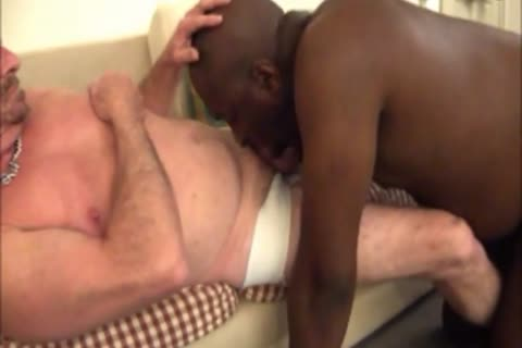 black Cub sucks his White daddies