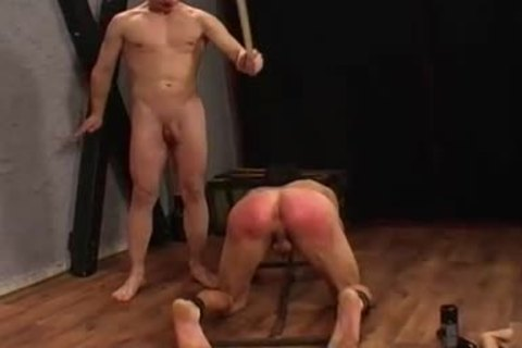 Discipline fellow receives Spanked