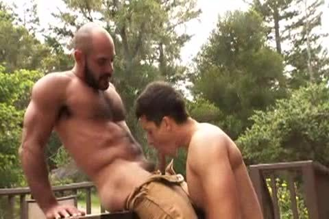 hairy Muscle Bald Bear bangs Jay Roberts