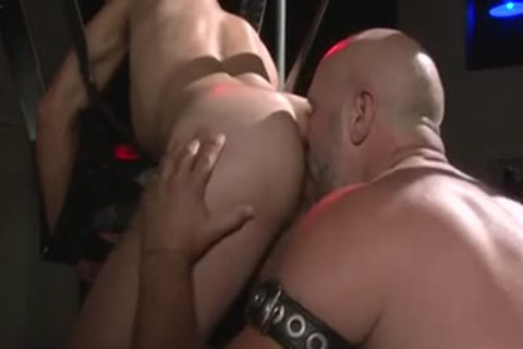 Bear Sticking It To His plow Buddy - Factory clip scene