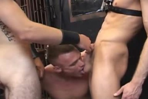 blowjob-jobs In The Backroom