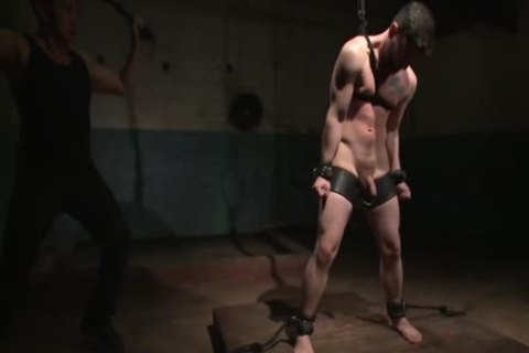 Flogged, Electrified, And slammed