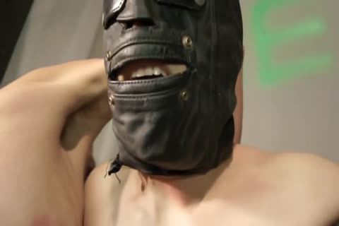 bdsm naughty bondman lad tied Up And Punished