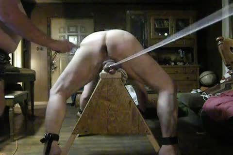fat Daddy receive fastened Up On His Sawhorse, Then Spanked And Balls Bashed.