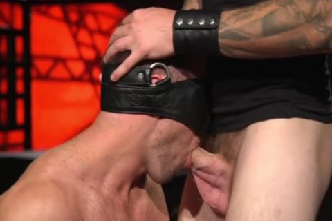 LEATHER MUSCLE duett