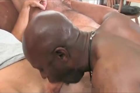 old black Daddy And Three White daddy man S One admirable T